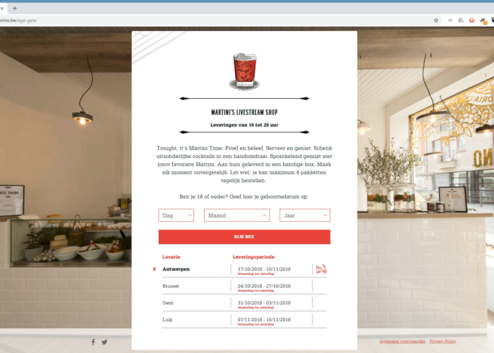 Copywriting voor Martini website